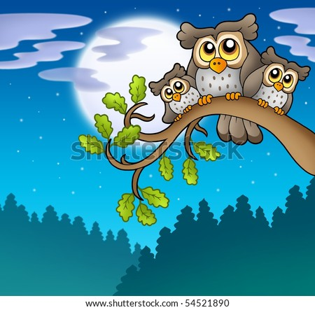 stock photo : Cute owls on branch at night - color illustration.