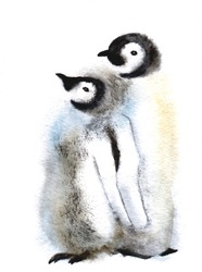 Cute Penguin family. Wild polar animal isolated on white background. Winter Artic character. Baby with mother. Watercolor Bird design. Hand drawn illustration.