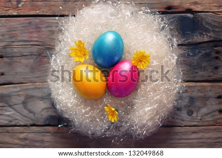 Cute photo with easter eggs in the nest