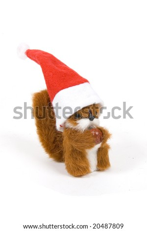 cute plushy squirrel wearing a christmas hat on white
