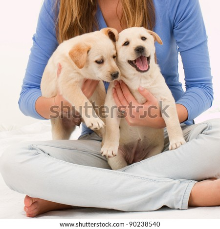 Cute puppies and  young girl -  young female with her pet dogs