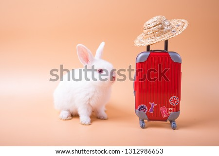 Cute rabbit wearing a hat, standing beside a suitcase, umbrella To travel on holiday. Cute Red bunny isolated for easter concept. #1312986653