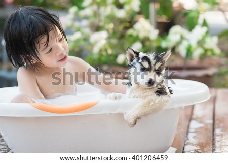 Cute siberian husky puppy bathing in the garden on a hot sunny summer day
