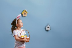Cute smiling little girl, looking away on a blue background and holding a basket of Easter eggs. Funny happy baby wears rabbit ears on Easter day. Have fun hunting for Easter eggs.Copy space