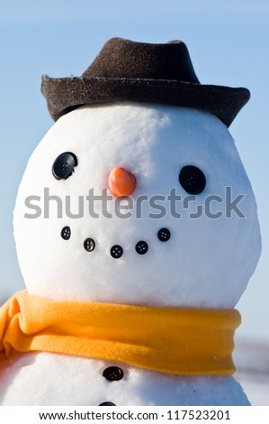 cute snowman portrait close up