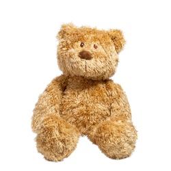 cute stuffed bear animal on white background