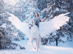 cute sweet sad lady on horseback with gorgeous soft light wings, white pegasus in a snowy winter forest carries a dark-haired girl in a gray dress, the friendship between man and animal