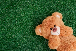 Cute teddy bear on green grass background