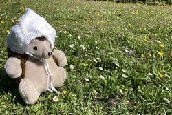 Cute teddy bear sitting on the left side on a garden full of flowers. Theddy bear is waering a white wool cap.
