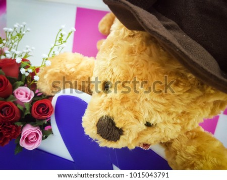 Cute teddy bear with rose on pink and white background, Sign of love and heart #1015043791