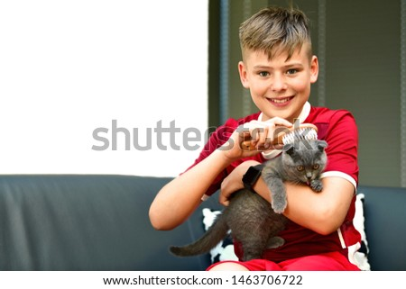 Cute teenager boy taking care and brushing a scottish fold blue cat with a cat brushes. Animal care and love for the animals concept with copy space. Cat's laundry, catlick, cat bath.