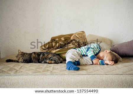 Cute toddler boy and cat sleeping together