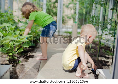 Cute toddler boy and girl (brother and sister or friends) working in the greenhouse, digging with little shovel #1180621366