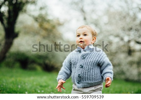 cute toddler boy with blue eyes ...