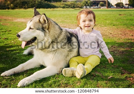 Cute toddler girl sitting on the grass with her Malamute dog.
