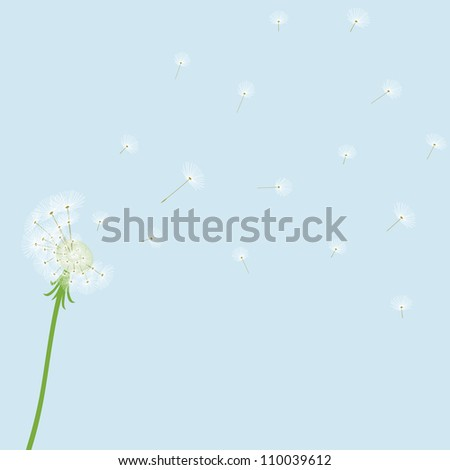 Cute vector dandelion on blue background
