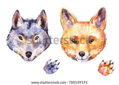 Cute watercolor fox and wolf. Hand-drawn animal's potrait isolated on white background
