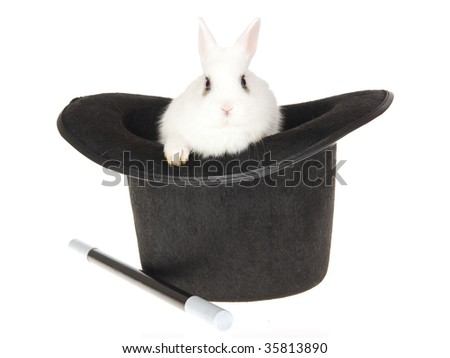 Cute white bunny in top hat, on white background