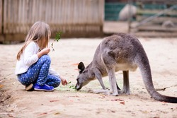 cute young girl and kangaroo in the zoo