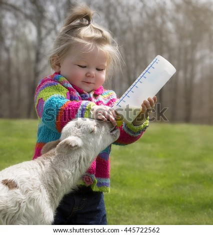 Cute, young girl, bottle feeding milk to a Katahdin lamb
