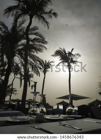 Cutlery, plates, upturned glasses on the table among palm trees and water in the distance and one bird in the sky