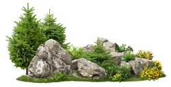 Cutout rock surrounded by fir trees and flowers. Garden design isolated on white background. Decorative shrub for landscaping. High quality clipping mask for professionnal composition