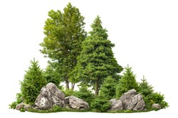 Cutout rock surrounded by fir trees. Garden design isolated on white background. Decorative shrub for landscaping. High quality clipping mask for professionnal composition. Stones in the forest.