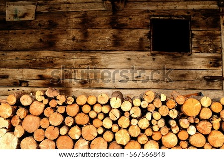 cutted trunks in a alpin hut in dolomites, Italy