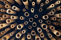Cutting bamboo, cross section of bamboo. copy space for text insertion