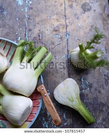 Cutting fennel - stock photo