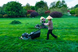 Cutting grass at the gardens in The Stone Forest located in Shilin Yi Autonomous County of Yunnan Province in China, Asia, UNESCO World Heritage Site