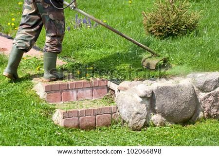 cutting grass in garden