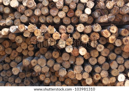 cutting wood stumps background