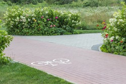 Cycle path in park among flower beds. Pictogram of bicycle on asphalt.