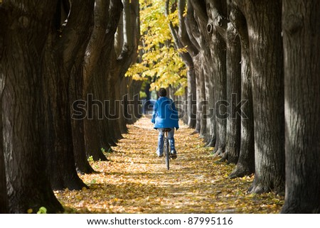 Cycling through an autumnal tree alley. - stock photo
