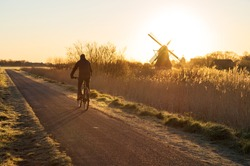 Cyclist on a bike lane in the Netherlands during a spring sunrise.