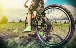 cyclist on a Mountain Bike on a forest track. photographed on a fisheye lens. focus on the rear wheel. Toned image