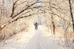 Cyclist on a trail in a winter snow-covered forest.