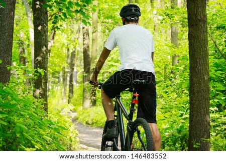 Cyclist Riding the Bike on the Trail in the Beautiful Summer Forest