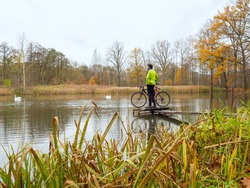 Cyclist stay at his trekking bike on small pond pier and watching swans and opposite bank.