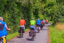 Cyclists in the forest. A group of cyclists riding on the road
