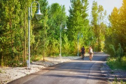 Cyclists ride on a forest paved road.