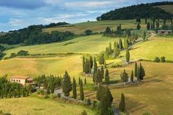 Cypress tree scenic road  near Siena, Tuscany, Italy.