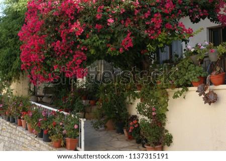 Cyprus sea view village rural vintage #1137315191