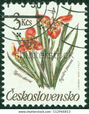 CZECHOSLOVAKIA - CIRCA 1990: A post stamp printed in Czechoslovakia shows Tigridia pavonia flower, circa 1990
