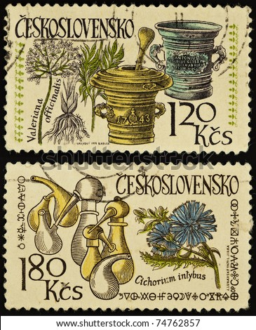 CZECHOSLOVAKIA - CIRCA 1971: A post stamps printed in Czechoslovakia shows plants Valeriana officinulis and Cichorium inlybus