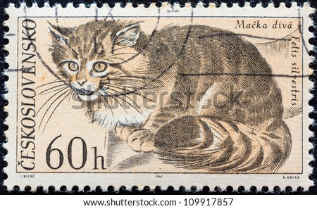 "CZECHOSLOVAKIA - CIRCA 1967: A stamp printed in Czechoslovakia from the ""Fauna of Tatra National Park"" issue shows a Wildcat (Felis silvestris), circa 1967."