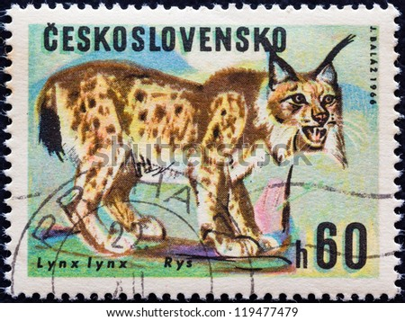 "CZECHOSLOVAKIA - CIRCA 1966: A stamp printed in Czechoslovakia from the ""Game Animals"" issue shows a Lynx (Lynx lynx), circa 1966."