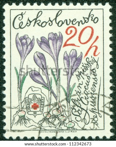 CZECHOSLOVAKIA - CIRCA 1979: A stamp printed in CZECHOSLOVAKIA shows Crocus, circa 1979