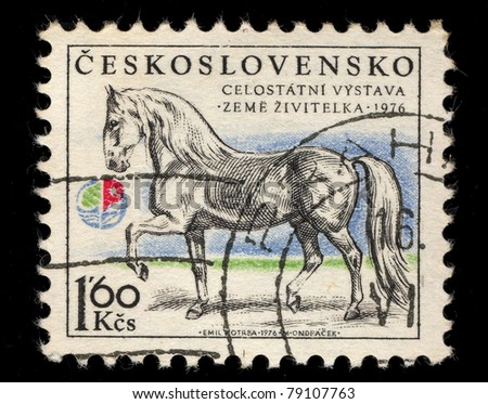 CZECHOSLOVAKIA - CIRCA 1976: A Stamp printed in Czechoslovakia shows image of  a horse, circa 1976